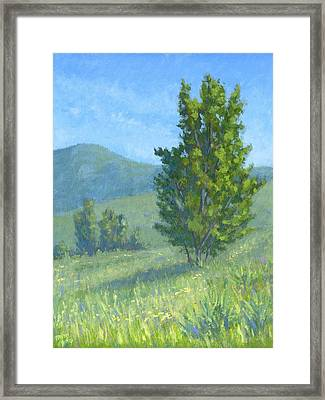 One Fine Spring Day Framed Print by David King