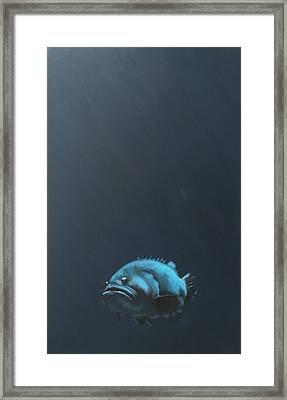 One Fish Framed Print by Jeffrey Bess