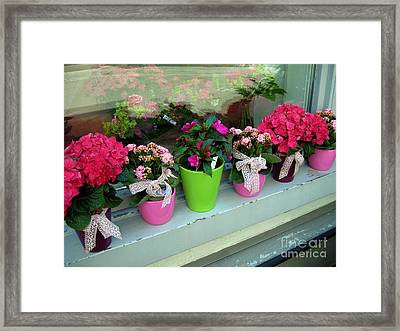 One For You - One For Me Framed Print by Susanne Van Hulst