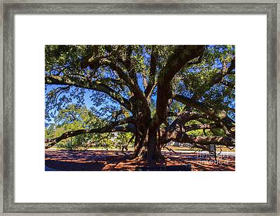 One Friendship Tree Framed Print