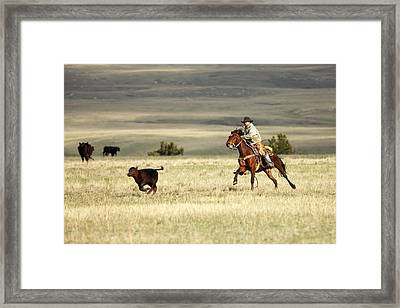 One Got Away Framed Print by Todd Klassy