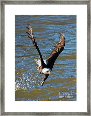 One Hand Grab Framed Print by Mike Dawson