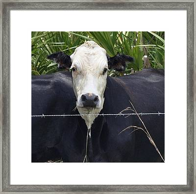One Head Two Bodies Framed Print by Sandy Poore