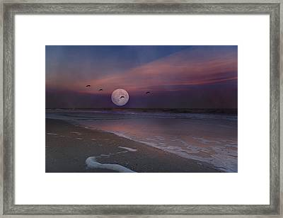 One In A Million  Framed Print by Betsy Knapp