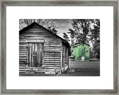 One In Color Framed Print by Andrew Crispi