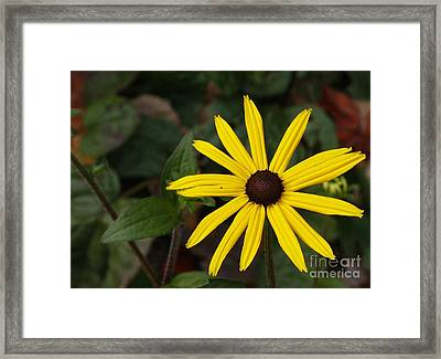 One Is All You Need Framed Print