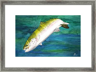 One Last Dive Framed Print by Jason Bordash