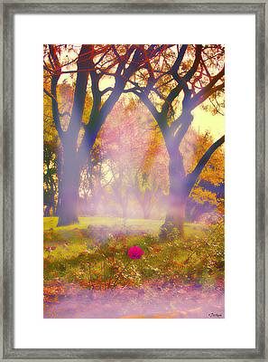 One Last One - 2 Framed Print