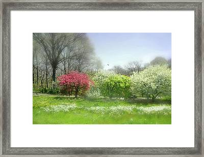 Framed Print featuring the photograph One Love by Diana Angstadt