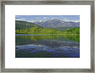 One Mile Lake Reflections 1a Framed Print by Walter Fahmy