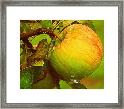One More Minute Framed Print