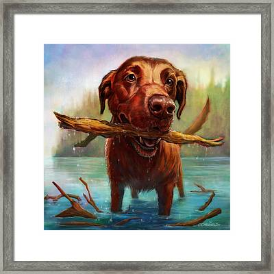One More Throw Framed Print by Sean ODaniels