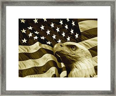 One Nation  Framed Print by Steve K