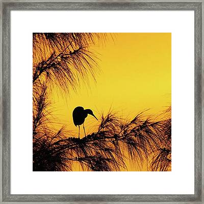 One Of A Series Taken At Mahoe Bay Framed Print