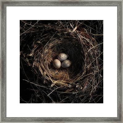One Of The Most Private Things In The World Is An Egg Until It Is Broken Mfk Fisher Framed Print by Mark Fuller