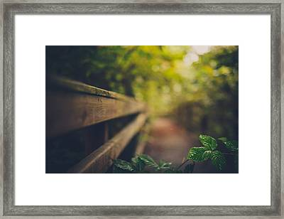 One Of Those Mornings Framed Print by Shane Holsclaw