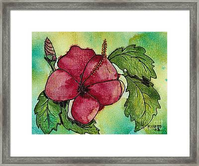 One Pink Hibiscus Framed Print by Susan Kubes