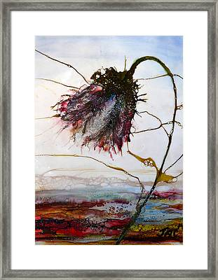 One Red Blossom Framed Print