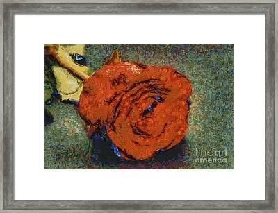 One Red Rose Framed Print