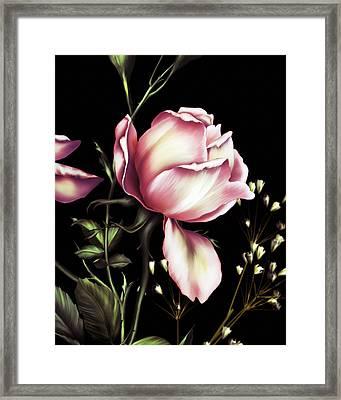 One Rose Bloom On Black Framed Print by Georgiana Romanovna