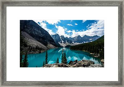 One Shot Framed Print