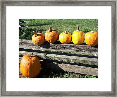 One Stands Alone Framed Print by Sandy Collier