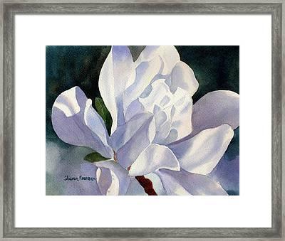 One Star Magnolia Blossom Framed Print by Sharon Freeman