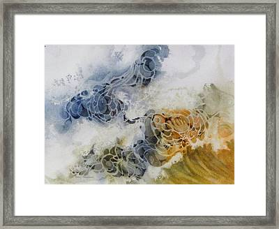 One-step-at-a-time Framed Print by Nancy Newman