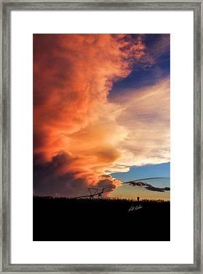 One Tall Sunset Framed Print