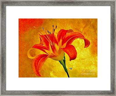 Framed Print featuring the photograph One Tigerlily by Marsha Heiken