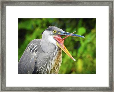 One Tongue To Rule Them All Framed Print