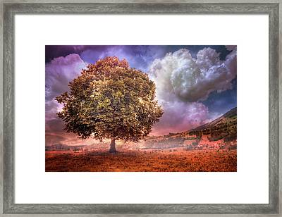 Framed Print featuring the photograph One Tree In The Meadow by Debra and Dave Vanderlaan