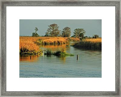 One Way In - One Way Out Framed Print