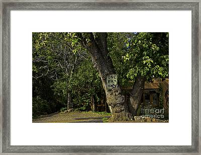One Way Framed Print by Madeline Ellis