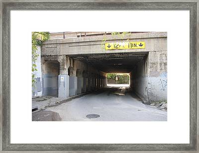 One Way To Go Framed Print by Lee Anderson