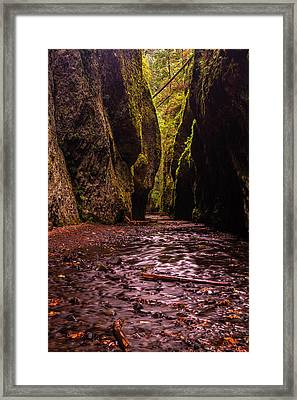 Oneonta Gorge In Fall Framed Print by Mark Kiver