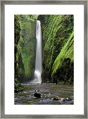 Oneonta Portrait Framed Print