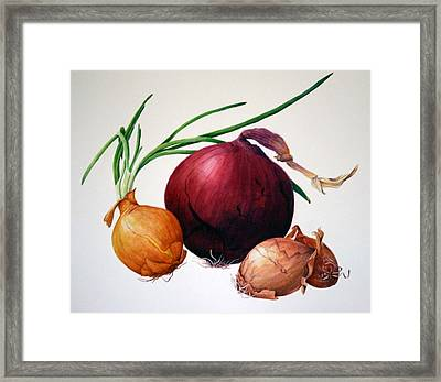 Onion Medley Framed Print