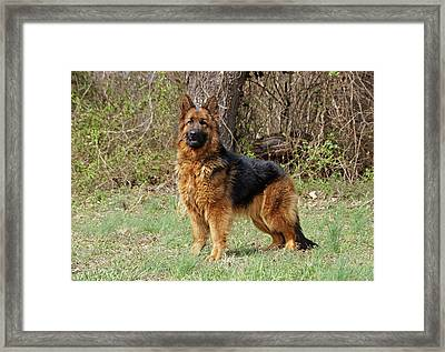 Framed Print featuring the photograph Onja by Sandy Keeton