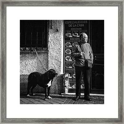 Onlookers  #señpr #dog #animals #pet Framed Print