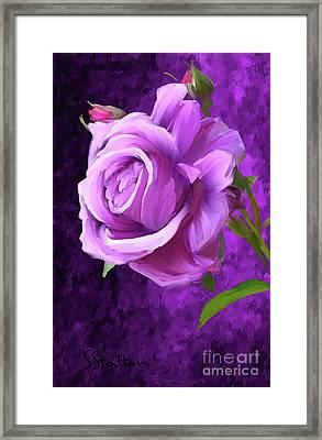 Only A Rose Framed Print