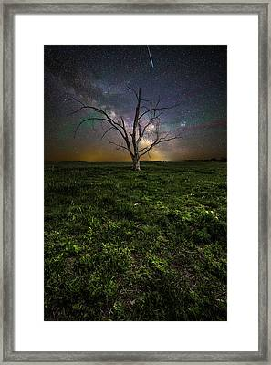 Framed Print featuring the photograph Only by Aaron J Groen