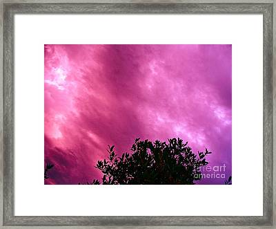 Only Chance To See This Framed Print by Chuck Taylor