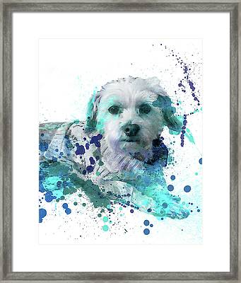 Only For Arlene 1 Framed Print by Delphimages Photo Creations