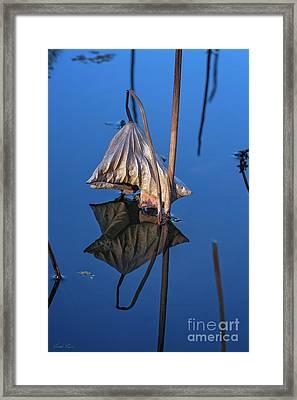 Only In Still Water Framed Print