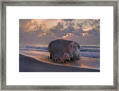 Only On Topsail The Best Kept Secret Framed Print by Betsy Knapp