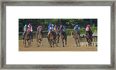 Only One Winner Framed Print by Betsy Knapp
