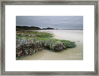 Only When It's Super Low Tide Framed Print
