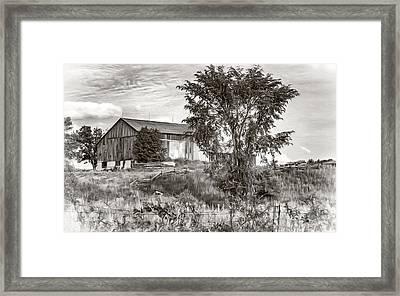 Ontario Barn 2 - Bw Framed Print by Steve Harrington