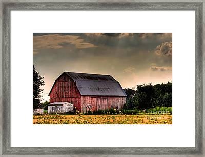 Ontario Barn In The Sun Framed Print by Tim Wilson